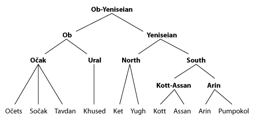 Tree diagram of the Ob-Yeniseian languages